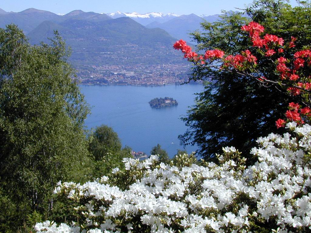Giardino Alpinia